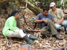 Team Guatemala at work