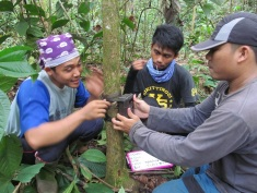 Team Indonesia at work